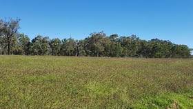 Rural / Farming commercial property for sale at .. Mount Owen Road Mitchell QLD 4465