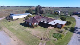 Rural / Farming commercial property for sale at 539 Mount Harris Road Murrami NSW 2705