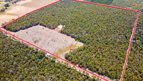 Rural / Farming commercial property for sale at 3619 Muir Highway (Dingup) Manjimup WA 6258