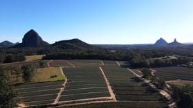 Rural / Farming commercial property for sale at 95 Anderson Road Glass House Mountains QLD 4518