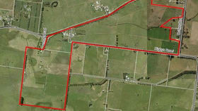 Rural / Farming commercial property for sale at 146 Rigbys Road Heywood VIC 3304