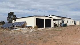 Rural / Farming commercial property for sale at 390 Bowhill Road Burdett SA 5253