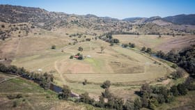 Rural / Farming commercial property for sale at 'Woodrow' 1999 Rouchel Rd Aberdeen NSW 2336