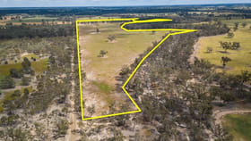 Rural / Farming commercial property sold at 201 Brooms Road Kotupna VIC 3638