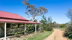 Rural / Farming commercial property for sale at 437 Mousehole Lane Orange NSW 2800