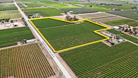 Rural / Farming commercial property for sale at Lot 38 Nelbuck Street Renmark North SA 5341