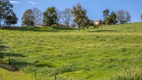 Rural / Farming commercial property for sale at 128 WILDMERE ROAD Thomson Brook WA 6239