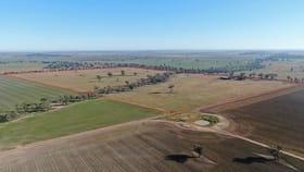 Rural / Farming commercial property for sale at 2686 Mary Gilmore Way Temora NSW 2666