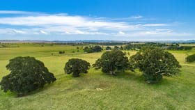 Rural / Farming commercial property for sale at 835 Reynolds Road Backmede NSW 2470