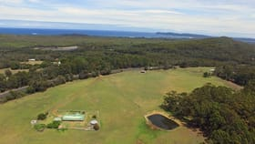 Rural / Farming commercial property for sale at 2446 South Coast Highway Denmark WA 6333