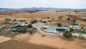 "Rural / Farming commercial property for sale at ""Pastime"" 287 Bithramere Lane, Bithramere Tamworth NSW 2340"