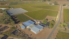Rural / Farming commercial property for sale at 118 Seventh Street Extn Birdwoodton VIC 3505