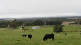 Rural / Farming commercial property for sale at 397 Meanwood Road Kronkup WA 6330