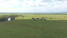 Rural / Farming commercial property for sale at 143 Inkerman Station Road Home Hill QLD 4806