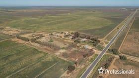 Rural / Farming commercial property for sale at 127 Wargan Road Wargan VIC 3505