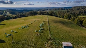 Rural / Farming commercial property for sale at 185 Old Colac Road Beech Forest VIC 3237