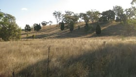 Rural / Farming commercial property for sale at Bourke Road Coolah NSW 2843