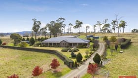 Rural / Farming commercial property for sale at Uralla NSW 2358