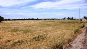 Rural / Farming commercial property for sale at 66-76 Minlaton Road Yorketown SA 5576