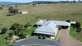 Rural / Farming commercial property for sale at 409 Cressfield Road Scone NSW 2337