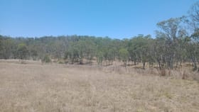 Rural / Farming commercial property for sale at 10/1461 Pierces Creek Road Pierces Creek QLD 4355