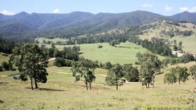 Rural / Farming commercial property for sale at Lot 5, 6, 7 Five Day Creek Road Comara NSW 2440