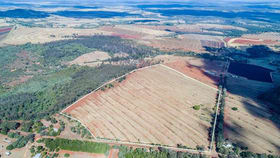 Rural / Farming commercial property for sale at Lot 1 Crn Bellottis and Smith Road Tablelands QLD 4605