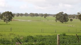 Rural / Farming commercial property for sale at 302 Five Ways Road Balmoral VIC 3407
