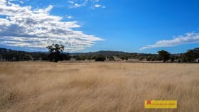 Rural / Farming commercial property for sale at 298 Gollan Road Mudgee NSW 2850