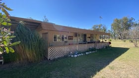 Rural / Farming commercial property for sale at 203 Paddys Creek Road Millmerran QLD 4357