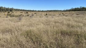Rural / Farming commercial property for sale at Peakvale Rd Clermont QLD 4721
