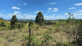 Rural / Farming commercial property for sale at Middlebrook Road Marlee NSW 2429