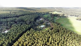 Rural / Farming commercial property for sale at Lot 74 Mornington Road, Mornington WA 6221