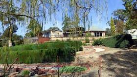 Rural / Farming commercial property for sale at 16 Eurack Ct KIAH Via Eden NSW 2551