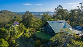 Rural / Farming commercial property for sale at Newee Creek NSW 2447