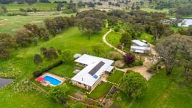 Rural / Farming commercial property for sale at 272 Boree Lane Orange NSW 2800