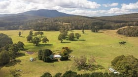 Rural / Farming commercial property for sale at 4394 Kings Highway, Monga Braidwood NSW 2622