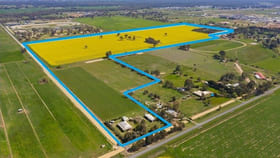 Rural / Farming commercial property for sale at 100-110 River Road Kialla VIC 3631