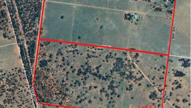 Rural / Farming commercial property for sale at Lot 52, 818 Pinelands Road Mitchell QLD 4465