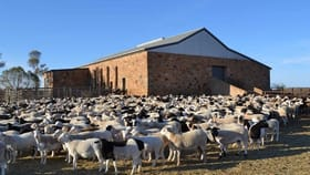 Rural / Farming commercial property for sale at Fowlers Gap NSW 2880