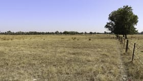 Rural / Farming commercial property for sale at 1/5 Pyles Lane Wangaratta VIC 3677