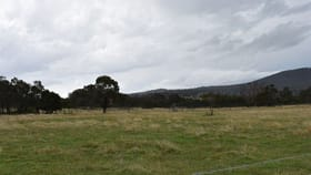 Rural / Farming commercial property for sale at 1013 Rockdale Road Bolivia NSW 2372