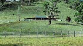 Rural / Farming commercial property for sale at 879 Duncans Creek Road Duncans Creek NSW 2340