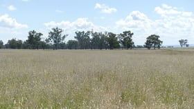 "Rural / Farming commercial property for sale at ""Newrybar"" Kelso Lane Tamworth NSW 2340"