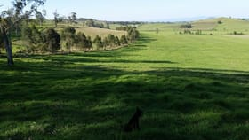 Rural / Farming commercial property for sale at 73 Gooleys Road Edenville NSW 2474