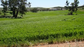Rural / Farming commercial property for sale at Lot 5695 Nabawa-Northampton Road East Bowes WA 6535