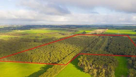 Rural / Farming commercial property for sale at 668 Dingey Road Naringal East VIC 3277