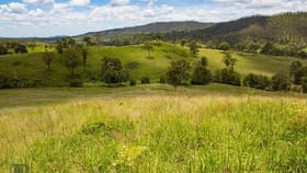 Rural / Farming commercial property sold at 1214 Kerry West Road Kerry QLD 4285