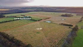 Rural / Farming commercial property for sale at Lot 81 Healy Road Narrikup WA 6326