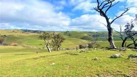 Rural / Farming commercial property for sale at Lot 119/121 Blue Hill Road Taralga NSW 2580